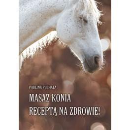 Masaż konia receptą na zdrowie!