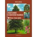Rośliny ozdobne w architekturze krajobrazu cz. III Drzewa i krzewy iglaste
