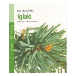 Iglaki Katalog roślin, porady, zestawienia
