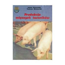 Produkcja mięsnych tuczników