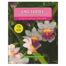 Orchidee  amatorska uprawa storczyków Katalog roślin i poradnik