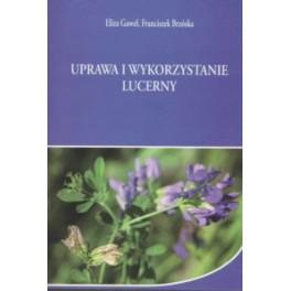 Uprawa i wykorzystanie lucerny