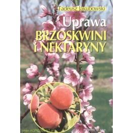 Uprawa brzoskwini i nektaryny