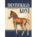 Identyfikacja koni