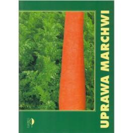 Uprawa marchwi