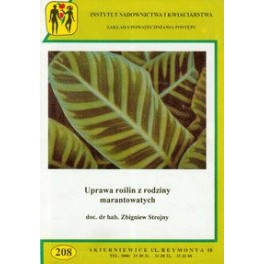 Uprawa roślin z rodziny marantowatych
