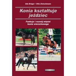 Konia kształtuje jeździec Funkcje i rozwój mięśni konia wierzchowego