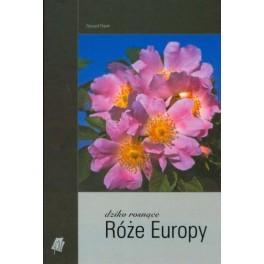 Dziko rosnące róże Europy