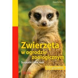 Zwierzęta w ogrodzie zoologicznym Surykatki i inne ssaki 320 gatunków
