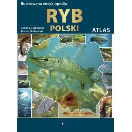 Ilustrowana encyklopedia ryb Polski