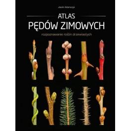 Atlas pędów zimowych