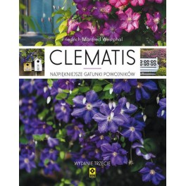 Clematis najpiękniejsze gatunki powojników