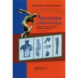 Anatomia człowieka Podręcznik i atlas dla studentów licencjatów medycznych