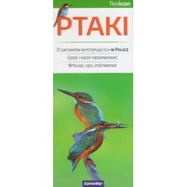 Ptaki 75 Gatunków występujących w Polsce