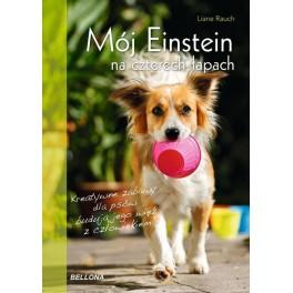 Mój Einstein na czterech łapach Kreatywne zabawy dla psów budują jego więż z człowiekiem
