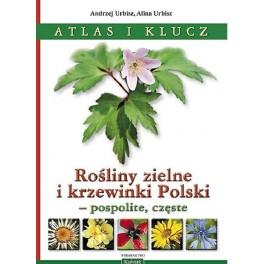 Rośliny zielne i krzewinki Polski - pospolite, częste Atlas i klucz