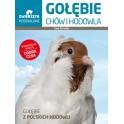 Gołębie Chów i hodowla Gołebie z polskich hodowli