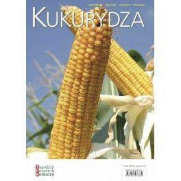 Kukurydza Nawożenie Odmiany Chwasty Ochrona