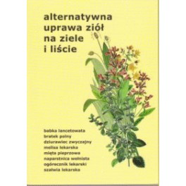 Alternatywna uprawa ziół na ziele i liście