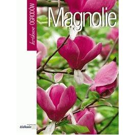 Magnolie Królowe ogrodów