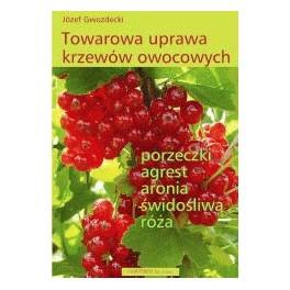 Towarowa uprawa krzewów owocowych