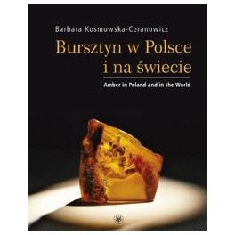 Bursztyn w Polsce i na świecie Wydanie polsko-angielskie