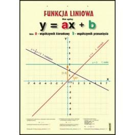 Funkcja liniowa Plansza dydaktyczna