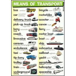 Means of transport Plansza dydaktyczna
