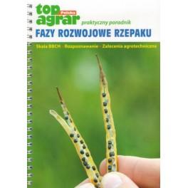 Fazy rozwojowe rzepaku Skala BBCH, rozpoznawanie, zalecenia agrotechniczne