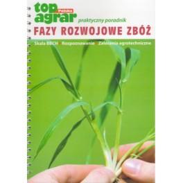 Fazy rozwojowe zbóż Skala BBCH, rozpoznawanie, zalecenia agrotechniczne