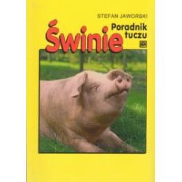 Świnie Poradnik tuczu