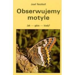 Obserwujemy motyle. Jak - gdzie - kiedy?