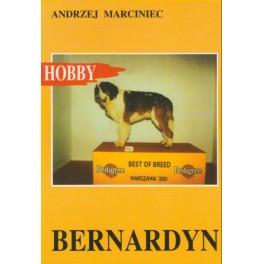 Bernardyn