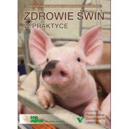 Zdrowie świń w praktyce Choroby, rozpoznanie, zapobieganie, leczenie